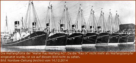 Wahlfangflotte Rau