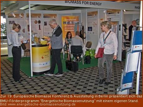 Biomasse-Experten diskutieren dezentrale Energietechnologien